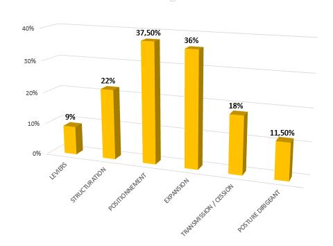 graphique problématique dirigeant_jaune